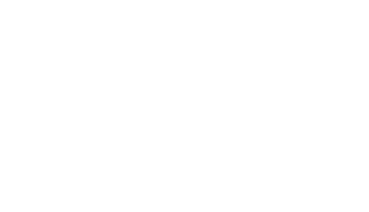 Braun logo white transparent